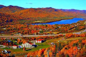 Corner brook autumn