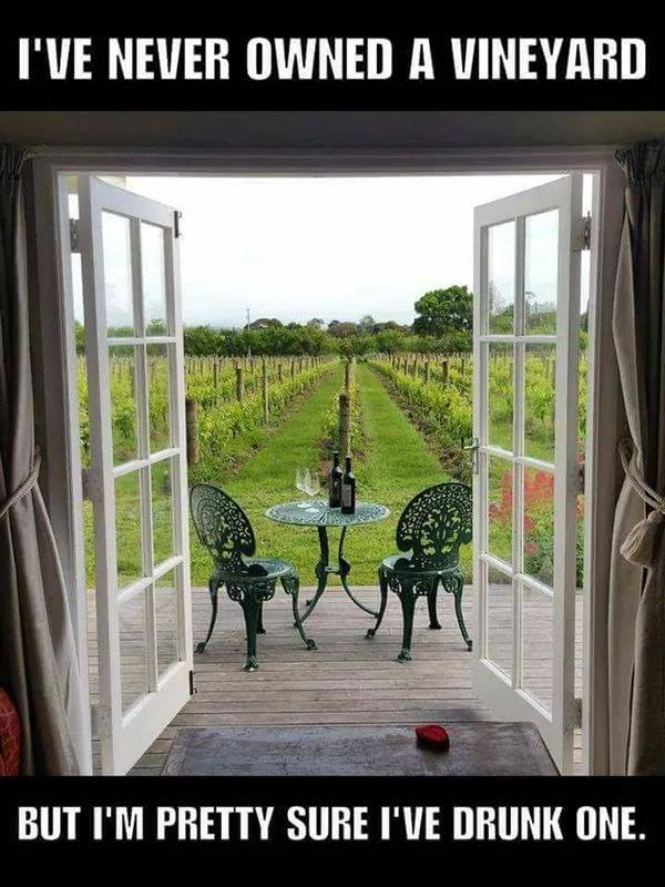 Owning a vineyard