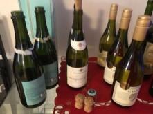 Wine Tasting Daphne 1
