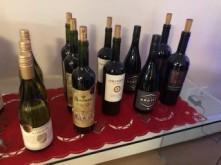 Wine Tasting Daphne 2