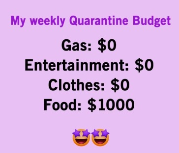 covid budget